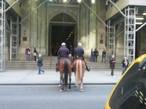 These are NYPD.  New York's finest.  On horseback. Just so you know.