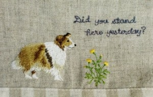collie 300x190 You Will Like This